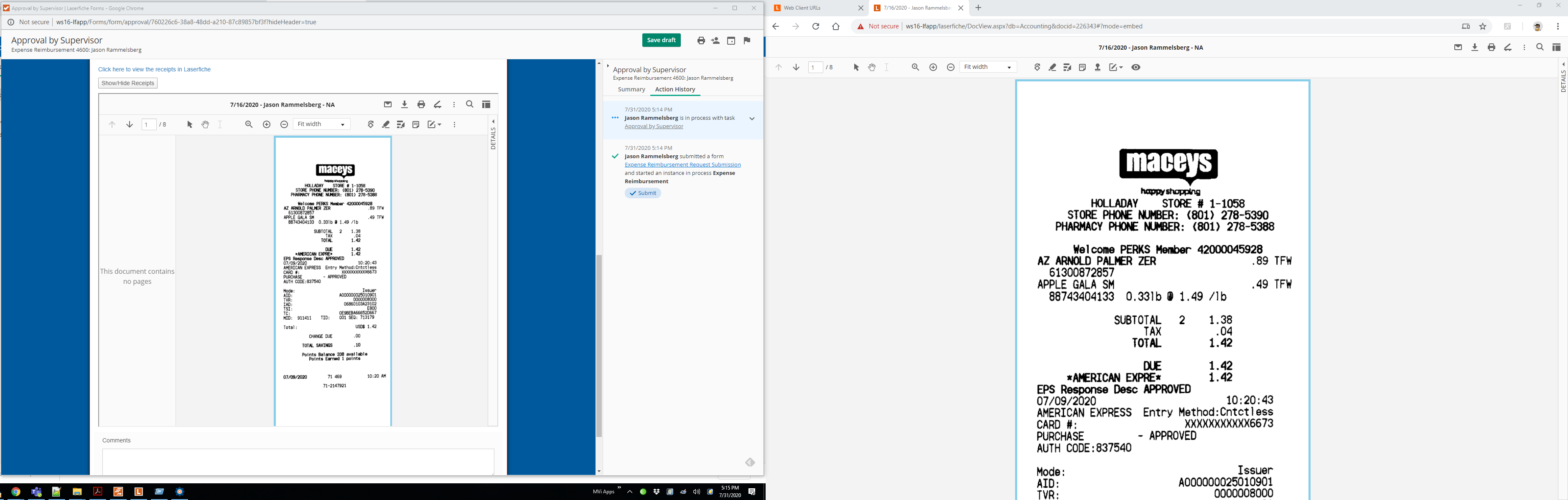 Embeded WebClient Document (Side by Side).PNG